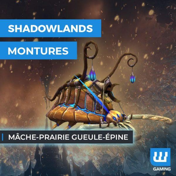 Achat monture Mâche-prairie gueule-épine WoW Shadowlands