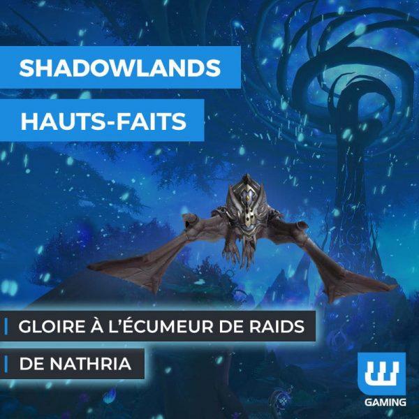Boost Gloire à l'écumeur de raids de Nathria
