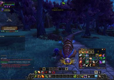 Guide : Les addons indispensables pour WoW Shadowlands