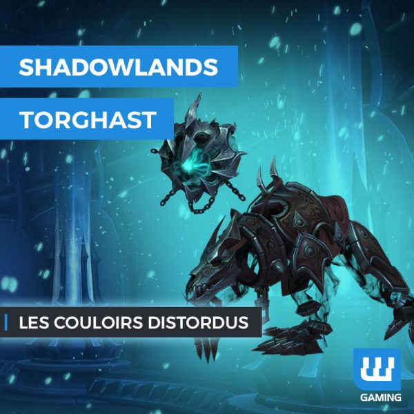 Les Couloirs Distordus WoW Shadowlands