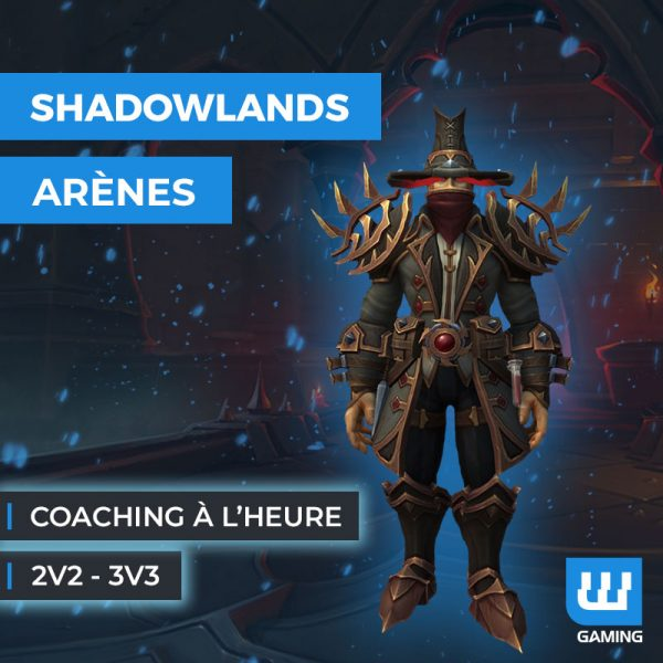 Coaching PvP WoW Shadowlands