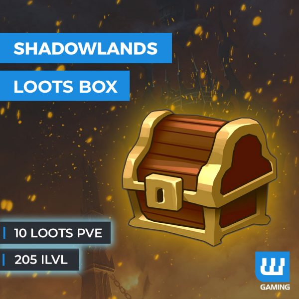 10 loots PvE 205ilvl WoW Shadowlands
